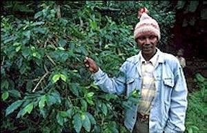 tanzania-coffee-farmer