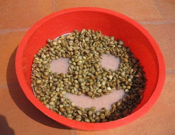 civit-smile